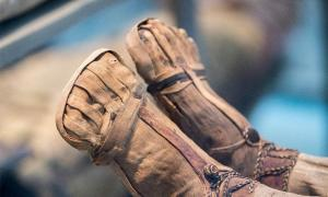 Mummified feet. Credit: Andrea Izzotti / Adobe Stock