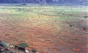 Fairy circles in the Marienflusstal area in Namibia.