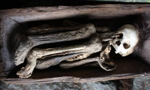 Fire Mummies