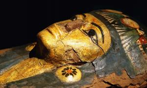 Egyptian sarcophagus containing mummified remains