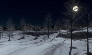 Full moon over a winter landscape