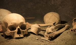 Ancient human remains.