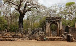 Ruins of Gedi Palace