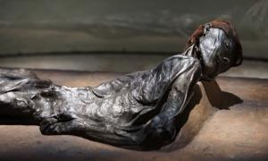 The Grauballe Man is a bog body that was uncovered in 1952 from a peat bog near the village of Grauballe in Jutland, Denmark.