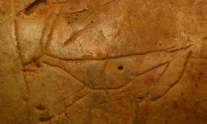 A carving of an extinct deer in the Asphendou Cave on Crete.
