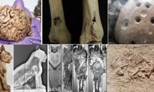 Top Ten Grisly and Gruesome Archaeological Discoveries of 2015