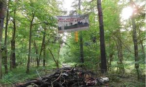 Barricades of Hambach Forest protest.
