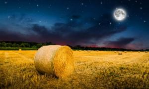 The Harvest Moon. Source: klagyivik / Adobe Stock.