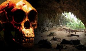 New Research Asserts that the Hobbits of Indonesia Vanished Earlier than Previously Believed