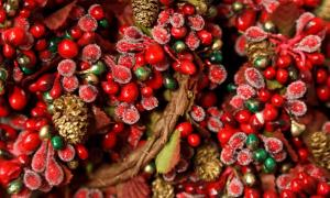 The Holly and the Ivy: How Pagan Practices Found Their Way into Christmas