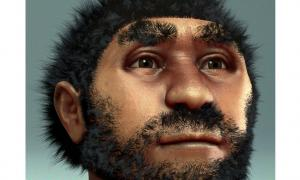 Forensic facial reconstruction of Homo erectus pekinensis, commonly known at Peking Man.
