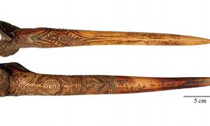 Bone daggers of the Sepik watershed, New Guinea. (a) Human bone dagger attributed to the Upper Sepik River. (b) Cassowary bone dagger attributed to the Abelam people.