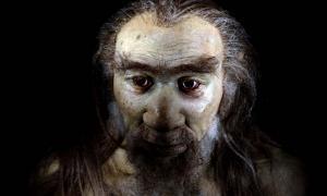 Prehistoric hominid species (Andrea Izzotti / Adobe Stock).