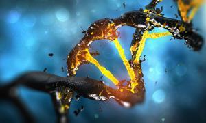 DNA molecule spiral structure with unique connection.