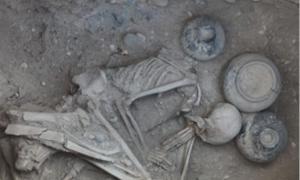 Human remains at the necropolis, (2013) Karmir Blur, Armenia (vchechne.ru)