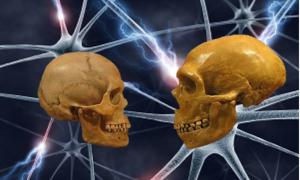 Schizophrenia Emerged After Humans Diverged from Neanderthals