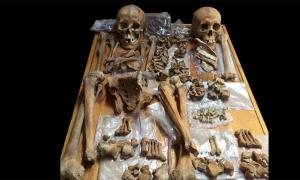 """Researchers are challenging historic gender archetypes, revealing many """"battle scars"""" on skeletal remains pointing to the existence of warrior women. Pictured: skeletons of two people buried in an ancient tomb in Mongolia include a woman (left) who may have been a horse-riding, bow-and-arrow-wielding warrior, scientists say. Source: Christine Lee / California State University"""