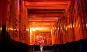 Inari Shrines: Worshiping Japan's Most Popular Shinto Deity