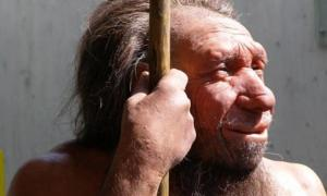 Inbred Neanderthals Left Humans with a Genetic Burden