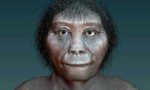 Artist's impression of Homo floresiensis.