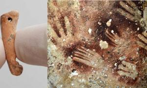 Hollow bone tube made from the long bone of a bear cuscus, may have been used as an 'air-brush' to create human hand stencils on rock surfaces.