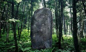 A tsunami stone.