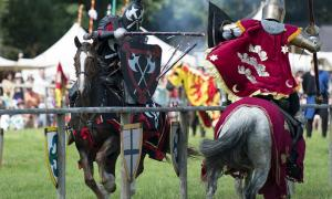A jousting match like the one that resulted in the last fall of King Henry VIII and his subsequent deteriorating health and eventual death.                     Source: Anthony / Adobe Stock