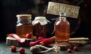 Homemade fermented raw kombucha tea with different flavorings. Source: sveta_zarzamora / Adobe.