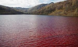 A red lake. Representational image only.