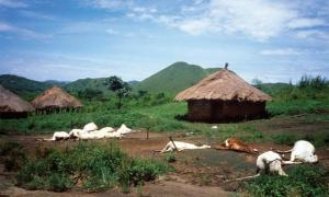 Lake Nyos Tragedy: A Deadly Demonic Fog in Cameroon