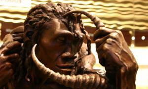 Homo erectus statue, taken at David H. Koch Hall of Human Origins as the Smithsonian Natural History Museum.