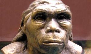 Lantian Man hominin