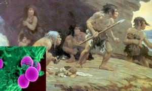 'Le Moustier Neanderthals, AMNH.' (1920) By Charles Robert Knight.