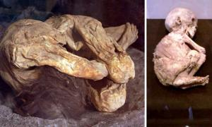 The Lemon Grove Mummies: Ancient Corpses from Mexican Cave Found in California Garage