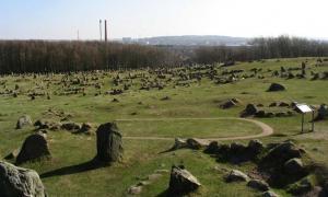 A view of Lindholm Høje.