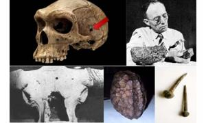 Clockwise: Rhodesia Man (YouTube Screenshot), H. H. Nininger (Fair Use), Auroch skull (Technology of the Gods: The Incredible Sciences of the Ancients), Salzburg Cube (Public Domain),Roman Nails (CC BY-SA 2.0)