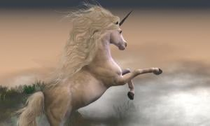 One of the elements of Magic of the Unicorn horn was its supposed ability to purify water.