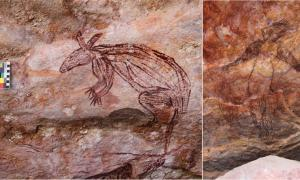 A new paper introduces 570 examples of Maliwawa rock art in rock shelters in Western Arnhem Land in Australia's Northern Territory. This image shows a rock art depiction of a Maliwawa macropod found in the Namunidjbuk clan estate of the Wellington Range. Source: (P. Taçon / Australian Archaeology)