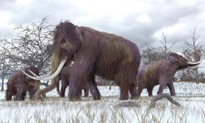 Mammoth-bone structure is dated at around 24,000 BC.       Source: auntspray / Adobe Stock