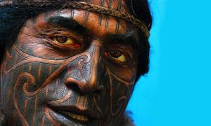 A Maori Warrior