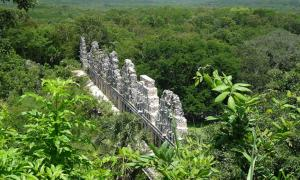Maya ruins surrounded by lush green vegetation of the current climate.