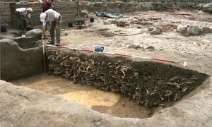 Human remains found at the excavation site at the medieval cemetery in Petriplatz, Berlin.    Source: Ausgrabung Petriplatz