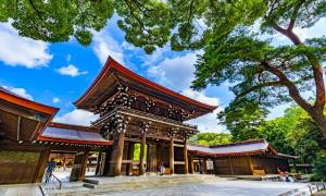 The Meiji Shrine, Tokyo.       Source: beeboys / Adobe Stock
