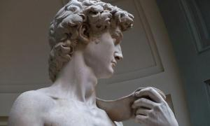 Photo of Michelangelo's David showing the jugular vein in his neck distended. Source: Jörg Bittner Unna / CC BY 3.0