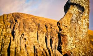The Ancient Inhabitants of Easter Island were not the Cause of the Deforestation on the Island