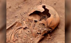 A tattooed skull in one of the newly unearthed Moche burials. Source: CEN/Proyecto Especial Naylamp Lambayeque