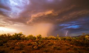 Study shows human migration could have followed monsoons to the Levant.Source: mdesigner125 / Adobe Stock
