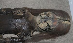Oldest Mummies in the World Are Turning into Black Slime