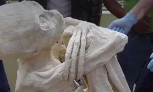 Alleged Mummy found at Nazca, clearly has three fingers and toes