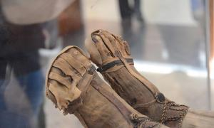 Mummified feet on display at museum.